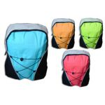 Σχολική τσάντα πλάτης